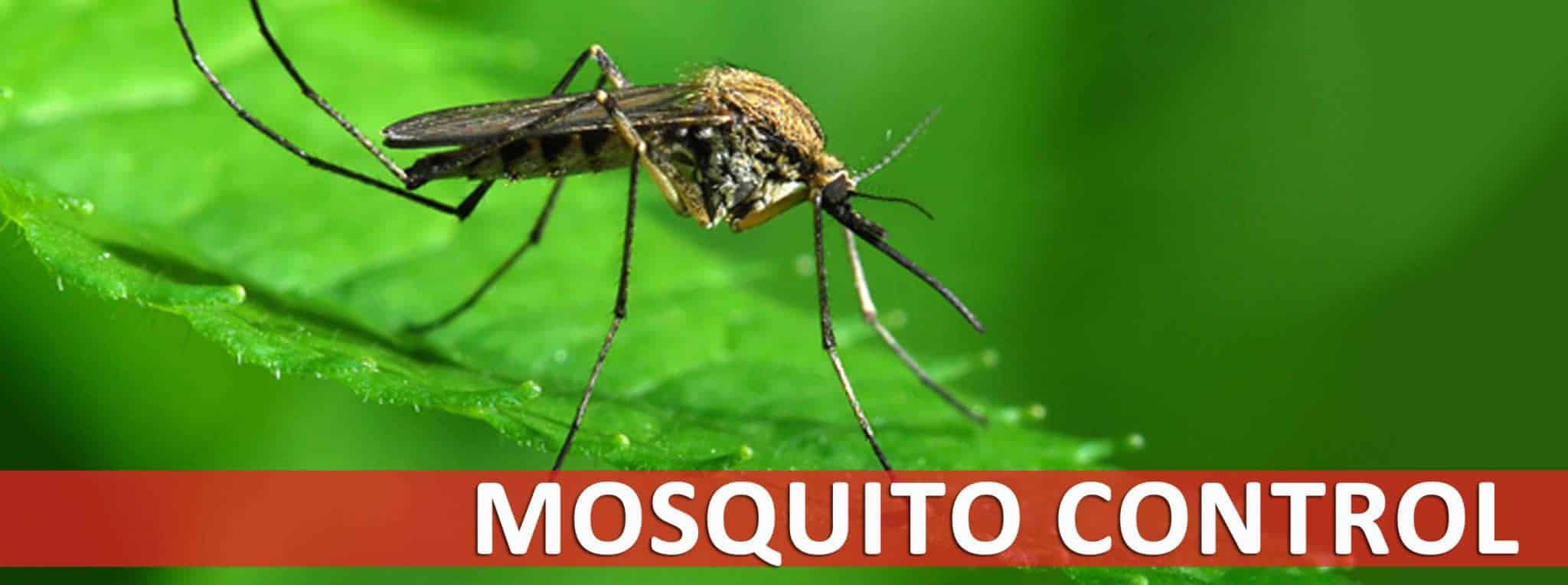 Iowa Mosquito Control